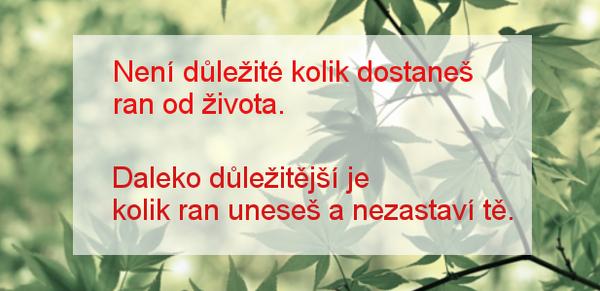 citat_neni_dulezite_kolik_ran_1