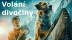 FILM: Volání divočiny (USA, dobrodružný, drama, rodinný) 2020 – online