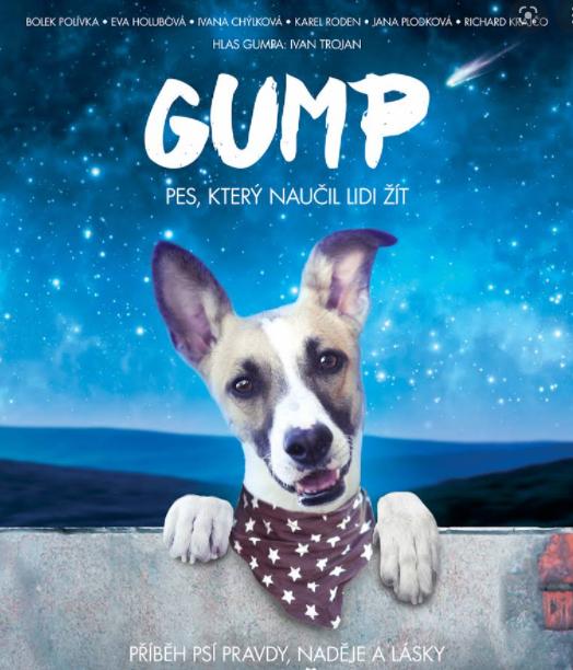 Plakát filmu Gump, který naučil lidi žít.
